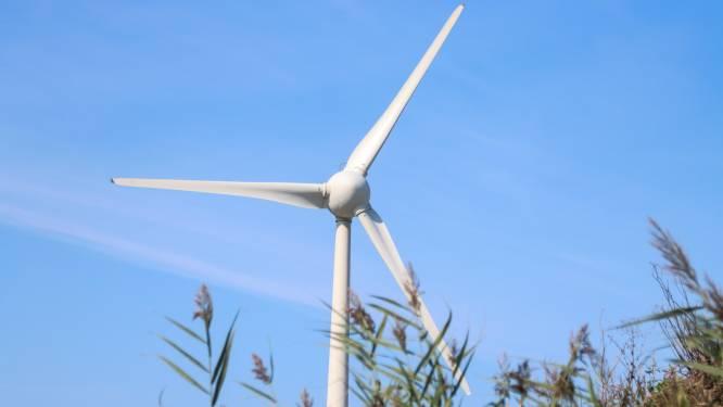 Nog één kans om op pauzeknop windpark Ze-Bra te drukken: 'Woensdrecht moet opkomen voor inwoners'