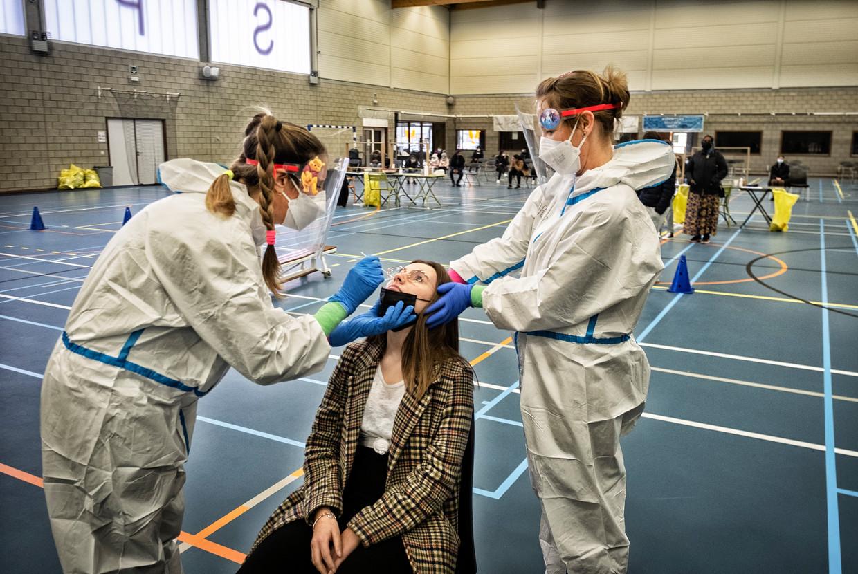 In een sporthal in Sint-Truiden werden al voor de derde dag op rij jongeren getest op het coronavirus. Beeld Tim Dirven