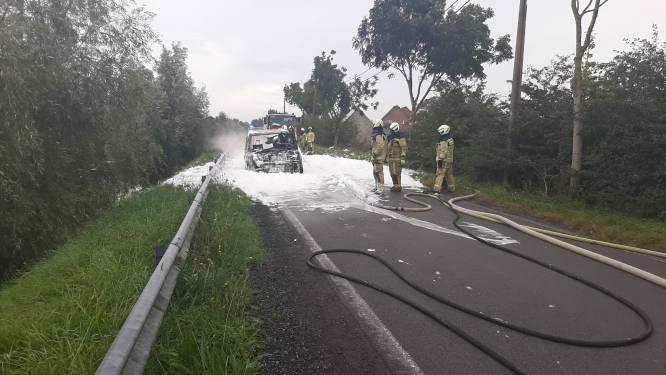"""Range Rover brandt volledig uit langs Lovaart: """"Blusschuim op kanaal is niet schadelijk"""""""