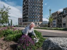 Gezocht: tuinman of -vrouw voor fleurige kade in Doesburg