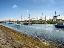 Meer bootjes in haven Tholen door lage prijzen
