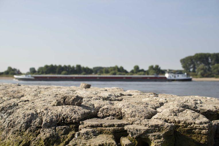 De bodem van de oever van de Rijn is gescheurd door de droogte. Het waterpeil daalt dagelijks en een opleving van de stand zit er voorlopig niet in. Beeld ANP