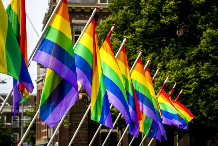 Regenboogvlaggen wapperen langs de Hofvijver in 2019. Beeld ANP