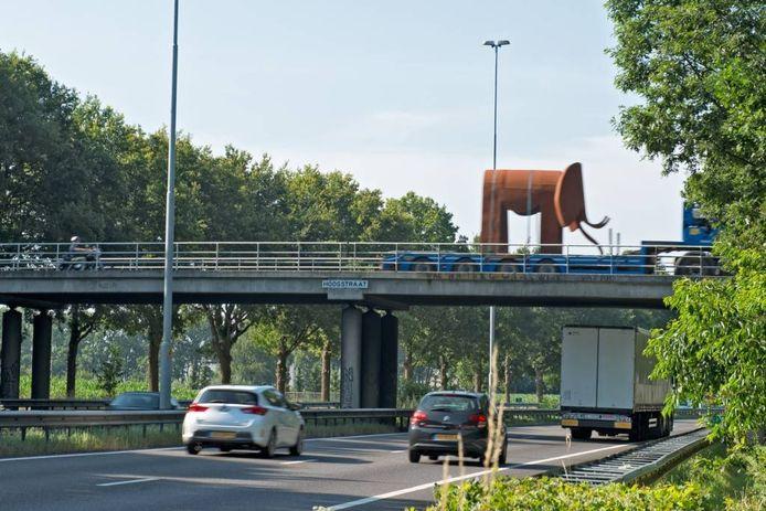 De olifant van Piet Hohmann onderweg van Dongen naar Oosterhout, gefotografeerd vanaf de Leijsendwarsstraat. foto Casper van Aggelen
