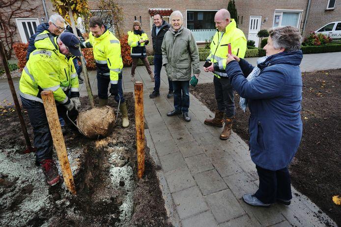 Bewoners van de Patrijsstraat komen polshoogte nemen bij de aanplant van de nieuwe bomen.