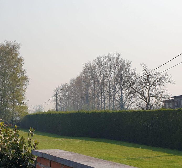 De brand in Brecht zorgt ook hier voor een laag mist.