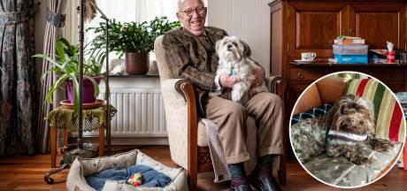 Bobby helpt Johan (92) over het verdriet van zijn doodgereden hondje Happy heen: 'Ik kom weer buiten'
