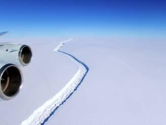 Derde grootste ijsberg ooit is losgescheurd van Antarctica