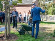 Burgemeester van Oisterwijk zet een keppeltje op en plant de Anne Frank Boom