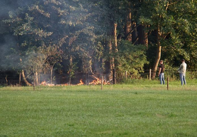 Omstanders zagen rook bij de bomen langs de Scherpenkampweg in Nijmegen en belden de brandweer.