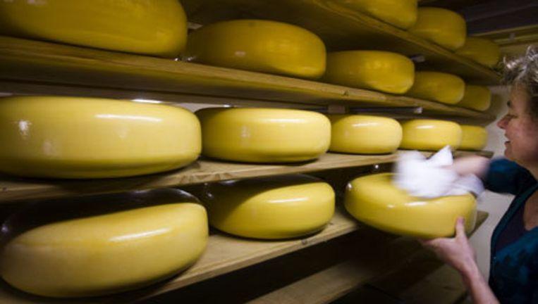 Goudse kaas is goed voor bijna de helft van de Nederlandse kaasproductie en -export. Foto ANP Beeld