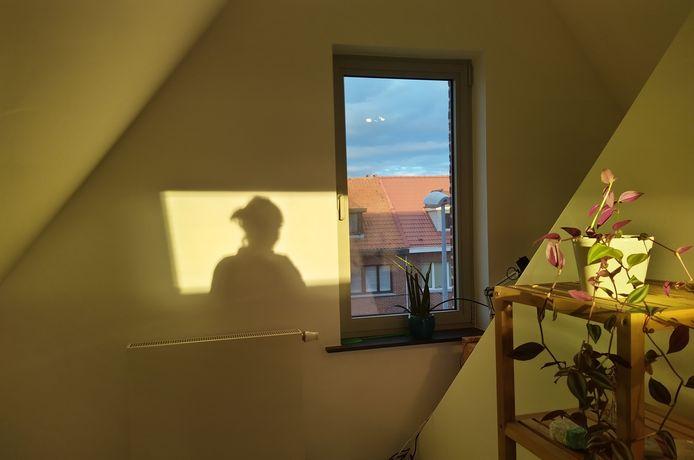 'De zolderkamer' van Eline De Keulenaer.