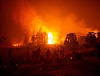 Preventieve evacuaties in Griekenland na nieuwe bosbranden