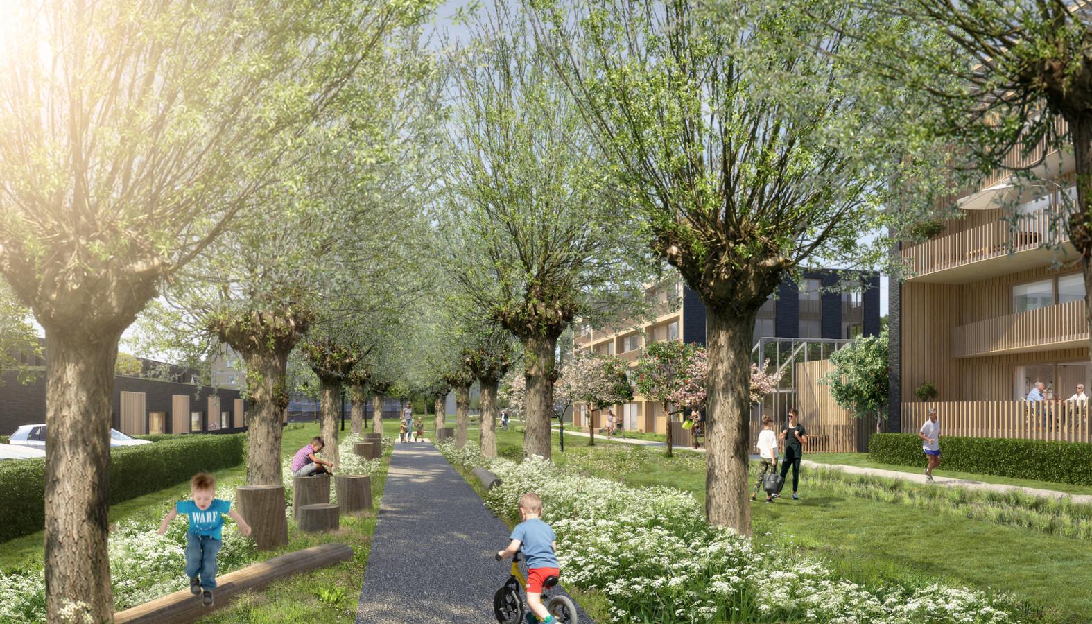 Een wilgenlaantje moet het hart van de verbinding tussen De Schoof en het gemeentehuis in Hendrik-Ido-Ambacht worden.