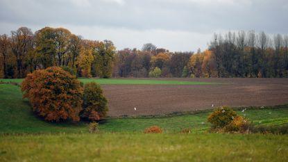 Huldenberg plant toeristisch project aan archeologische site De Tomme
