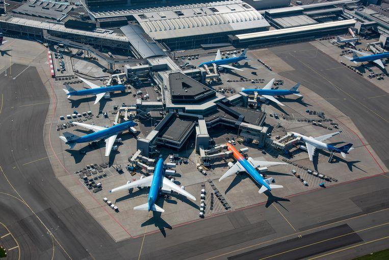 KLM-toestellen op Schiphol. KLM stopt met al haar vluchten naar China. Beeld ANP