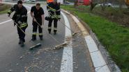 Brandweer veegt hakselhout van uitrit E34