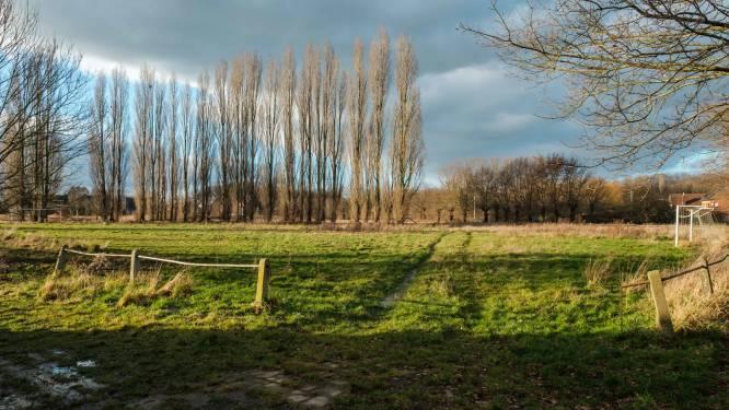 Nieuwe burgerbeweging voor behoud groengebied Zevenhuizen organiseert infowandeling