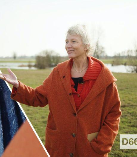 Zetelzoekers   Komt deze vloggende D66'er uit Gorssel in de Kamer? 'Had een grotere achterban dan ik dacht'