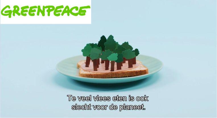 . Beeld Screenshot video Greenpeace
