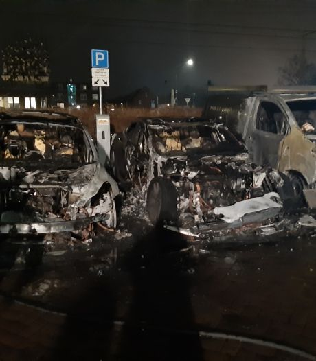 Eigenaar uitgebrande Tesla houdt het in Oisterwijk op 'baldadigheid'