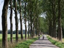 Sterft de es in Nederland uit?
