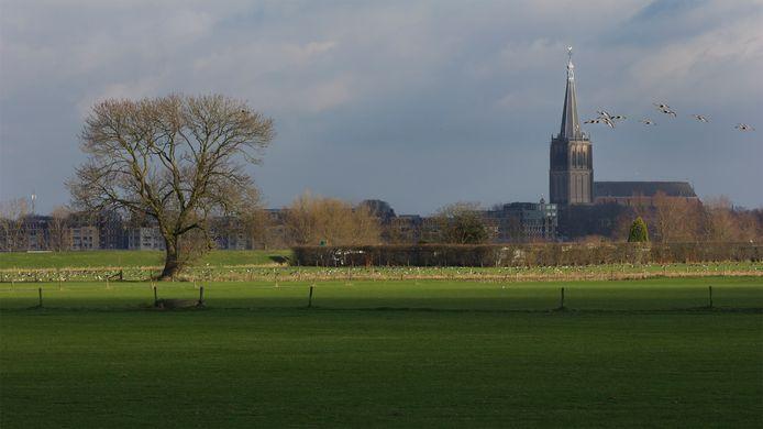 Net buiten Doesburg is ruimte genoeg voor zonneweides maar wil de Doesburger die ook? Uit onderzoek van bureau PON & Telos blijkt dat er 'enige weerstand' is: eerst de daken vol.