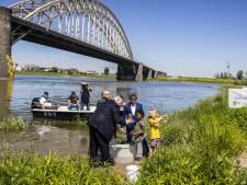 Duizenden elftenlarven uitgezet in de Waal; gaat dit zorgen voor de terugkeer van deze vis?