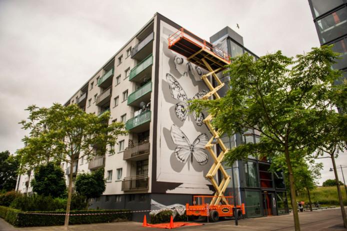Nieuwe Blind Wall in Breda aan Tuinzigtlaan, hoogste tot nu toe: 20 meter, gevuld met hyperrealistische vlinders. Foto: PHOTED, Edwin Wiekens.
