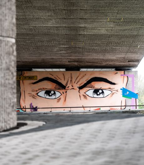 Uitgestelde Sonsbeek-expositie in juli en augustus op 13 plekken in Arnhem en Hoge Veluwe