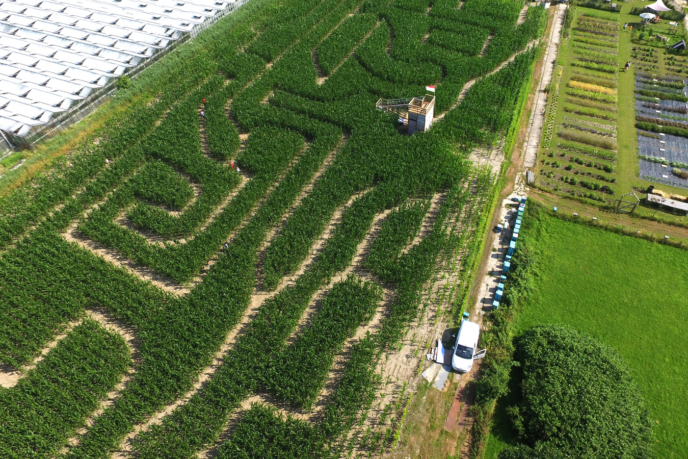 Het maisdoolhof vanuit de lucht.