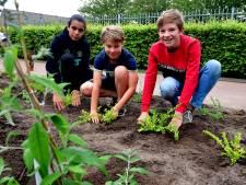 Nooit meer een lekke voetbal, leerlingen Lavoor regelen zelf vervanging voor prikkelbosjes