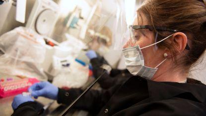 Antimalariamiddel tegen Covid-19? Niet te vroeg juichen