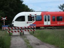 Spoorwegovergang Greversweg in Winterswijk: tunnel en brug beide te duur