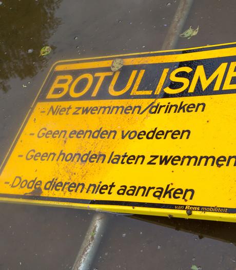 Waterplas Lindenholt hele zomer al verboden gebied