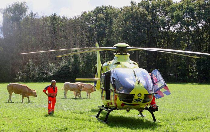 De traumahelikopter landde in een weiland langs de weg, tussen de koeien.