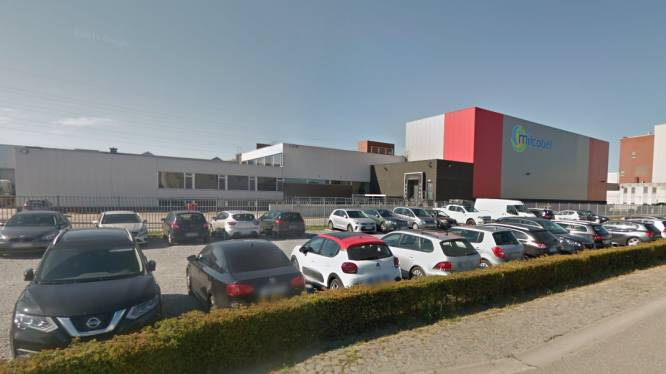 Zuivelcoöperatie Milcobel wil Drinks-afdeling in Schoten sluiten: 167 banen op de helling