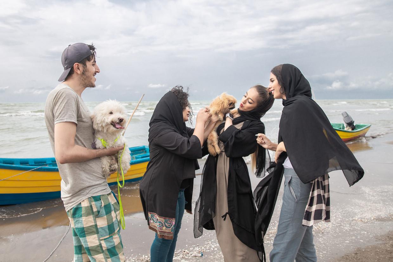 Een vriendengroep speelt aan de kust van Mahmoudabad in Noord-Iran met honden, hoewel honden op het strand niet zijn toegestaan. Beeld Forough Alaei