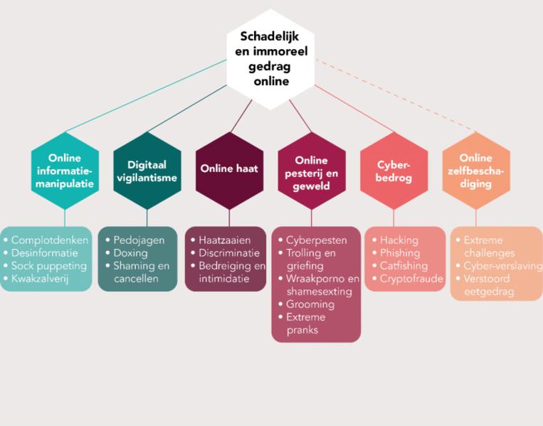 De taxonomie van schadelijk en immoreel online gedrag volgens het Rathenau Instituut Beeld Rathenau Instituut