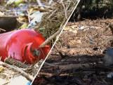 Puinruimen in Limburg nog te gevaarlijk voor vrijwilligers