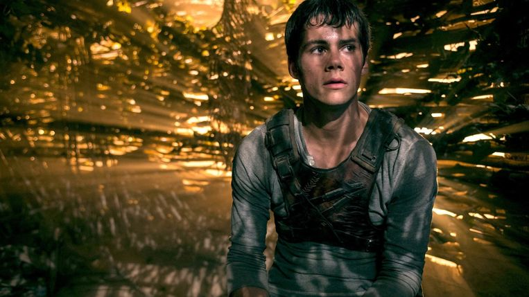 Dylan O'Brien in The Maze Runner van Wes Ball. Beeld
