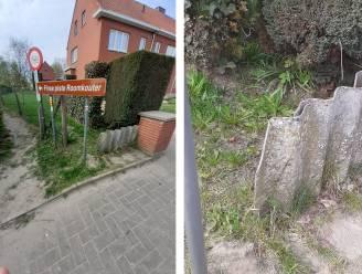 Gemeente verwijdert asbestplaat aan toegangspad Roomkouter