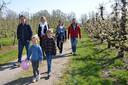 De bloesemwandelingen bij Fruitsappen Verhofstede in Eksaarde zijn een groot succes.