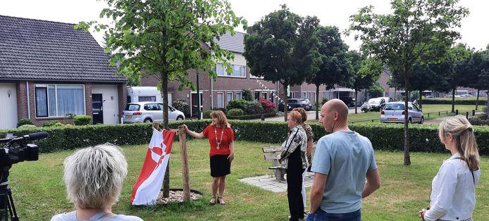 Onthulling van de 'corona gedenkboom' in Heesch.