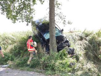 Bestuurder (63) ernstig gewond na klap tegen boom