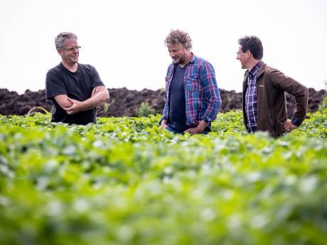 Boeren weg uit natuurgebieden als De Wieden? 'Dan kan de natuur niet blijven bestaan'