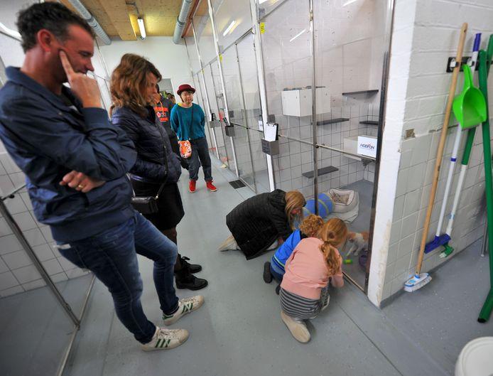Het huidige asiel De Doornakkers tijdens een open dag in 2018