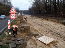 Een westelijke rondweg zónder autotunnel? Dat is het uitzoeken waard, zeggen D66 en GroenLinks