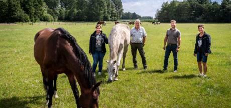 Grootste paardenrusthuis van Nederland: 450 paarden genieten bij Hans en Maria van hun oude dag