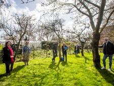 Deze vier Westlandse organisaties maken kans op vrijwilligersprijs het WestlandHart